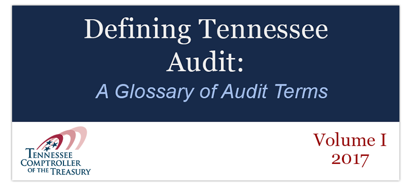 audit glossary